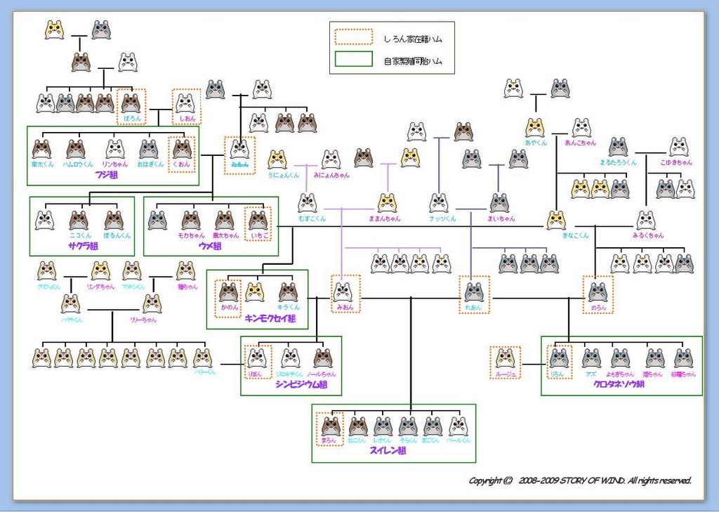 Genealogicaltree_2