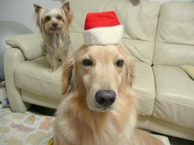 Christmas_0021
