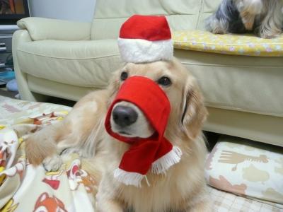 Christmas_0041
