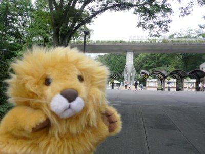 Tama_zoo_84_ouji_0011_2